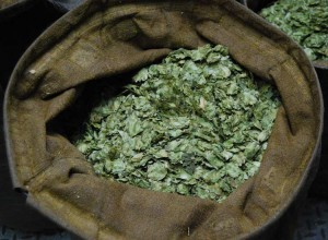 Sack of whole hops